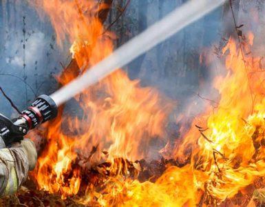 Wildfire Fighting