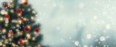 A Christmas tree viewed through snowfall