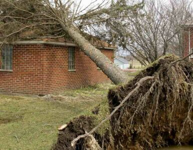 a brick house with a tree fallen on it as the result from a tornado and high winds