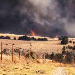 Massive Fire Whips Up Firenado in Rural LA County, What Is a Firenado?