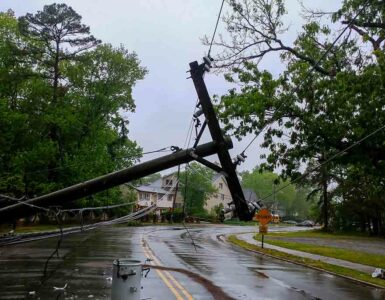 a tree and transformer on a road after a hurricane