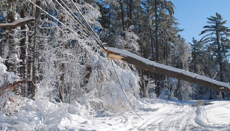 snow and ice topple power line