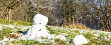 mild winter with melting snow, snowman