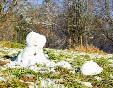 mild winter with melting snow, snowman