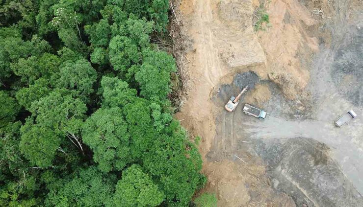 aerial photo of deforestation