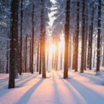 Incredibly Cool Facts You Didn't Know About Snow