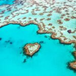 Earth Sees Hottest November Ever, Barrier Reef Decline at Critical Level
