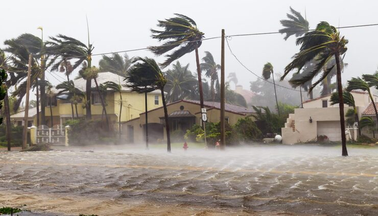 Palm trees and buildings being battered by hurricane winds and rain