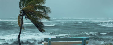 beach-front park with palm tree and bench, a tropical storm approaches